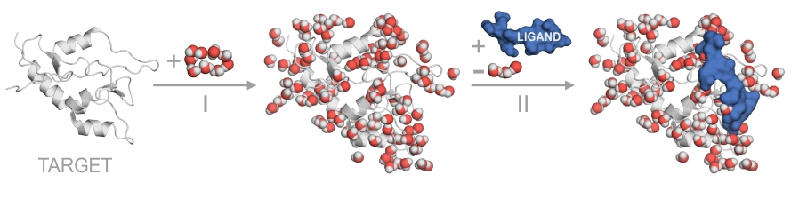 MobyWat calculates the hydration structure of a molecular surface (I) and/or an interface (II)